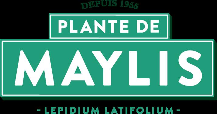 Logo Maylis